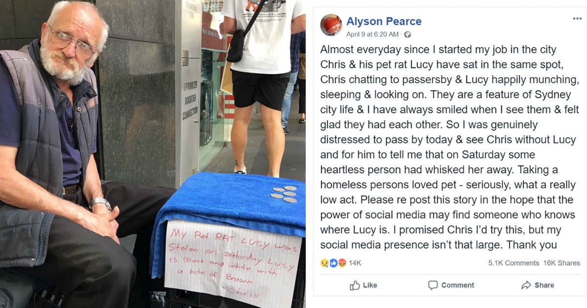 Woman Accidentally Steals Homeless Man's Pet Rat and 2 Weeks Later They Are Finally Reunited