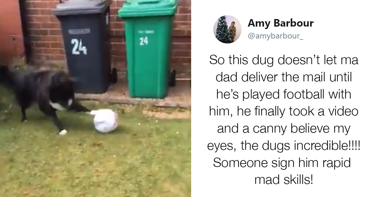 Dog Won't Let This Postman Deliver Mail Until He Plays Soccer With Him