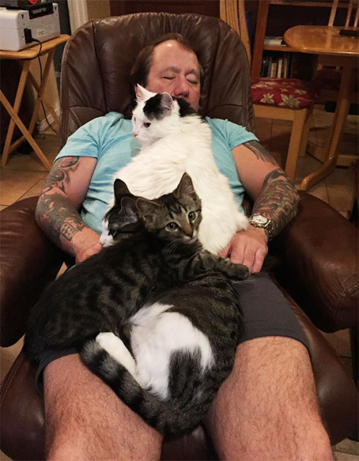 Maximum relaxation. With cats.