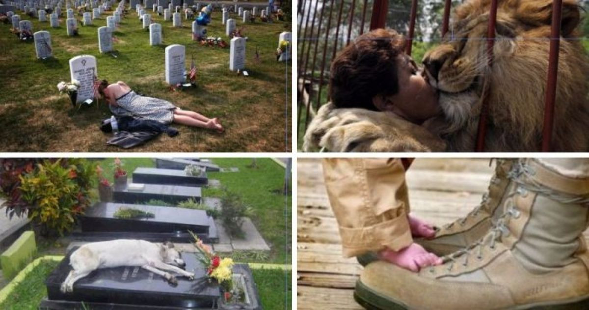 20 Powerful and Absolutely Touching Images