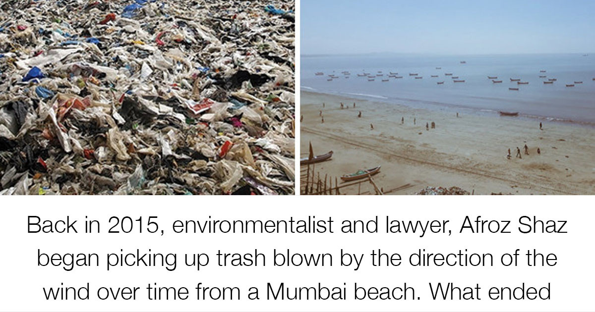 Wholesome Stories About The Environment That Will Restore Your Faith In Humanity