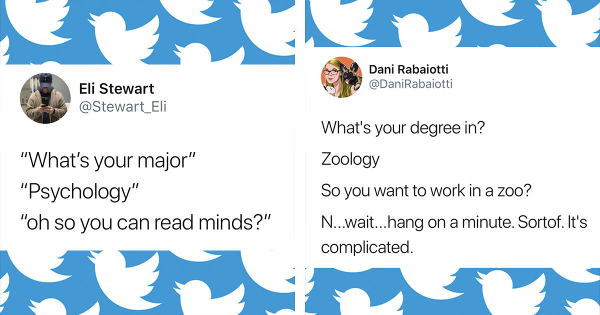 People Were Asked What Their Degree Was And The Responses Are Hilarious