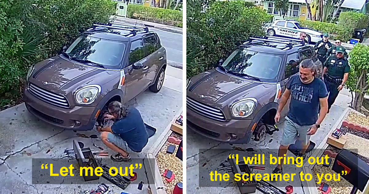 Man Has Police Show Up At His House Because His Parrot Sounds Like A Woman Screaming For Help