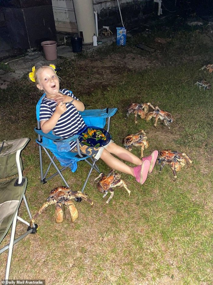 Winter McKendrick looked calm as the huge crabs surrounded her.