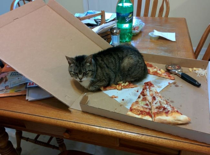 2. I own this slice now