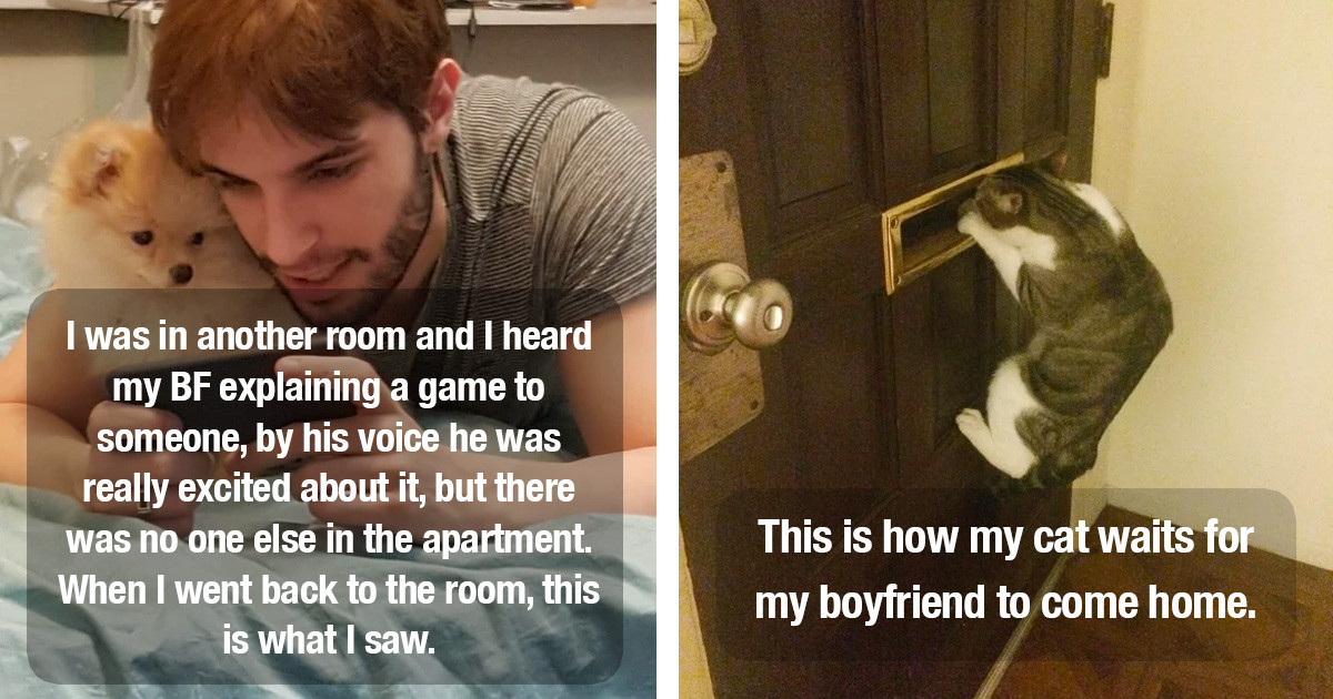These People's Pets Stole Their Partners And It Is So Cute
