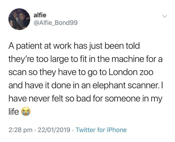 Getting a scan at the zoo