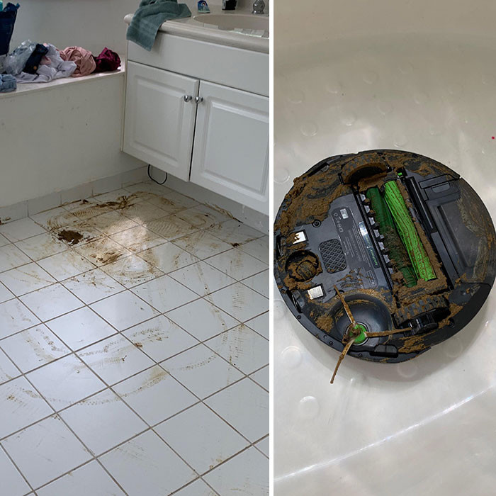 The Roomba tried to clean up doggy doo then proceeded to try and clean up the house again.