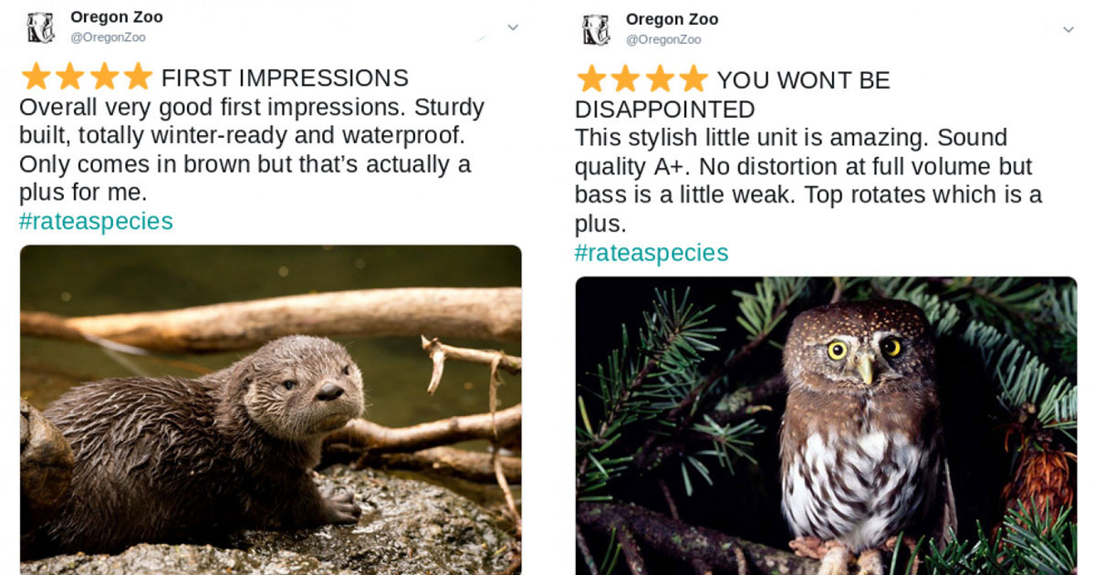 These Zoos Are Giving Their Animals Amazon-Like Reviews And They're As Informative As They Are Creative